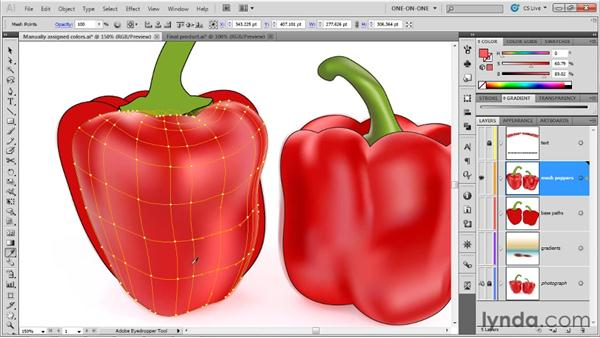 Finessing the colors of mesh points: Illustrator CS5 One-on-One: Mastery