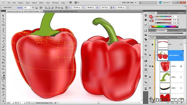 Creating a mesh with the Mesh tool: Illustrator CS5 One-on-One: Mastery