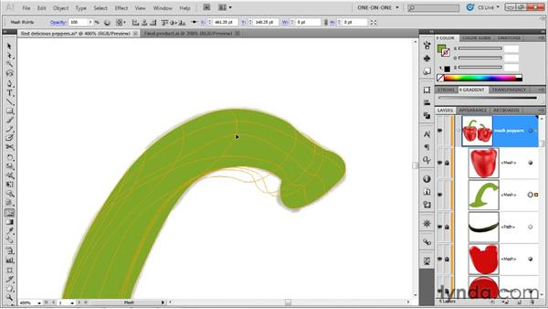 Adding a gradient mesh to a slender shape: Illustrator CS5 One-on-One: Mastery