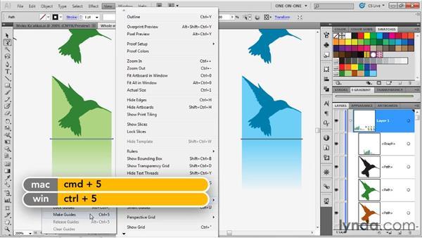 Assembling sliding graph designs: Illustrator CS5 One-on-One: Mastery