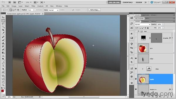 Adding a photographic texture: Illustrator CS5 One-on-One: Mastery