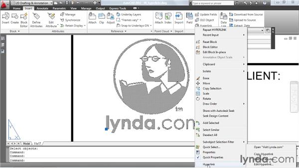 Applying hyperlinks to drawing objects: AutoCAD: Tips, Tricks, and Industry Secrets