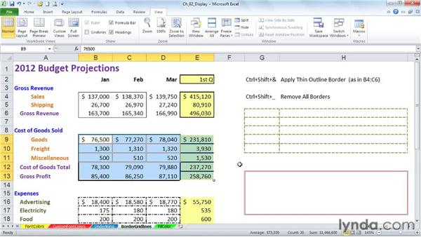 Applying border styles and adjusting gridlines: Excel 2010: Advanced Formatting Techniques
