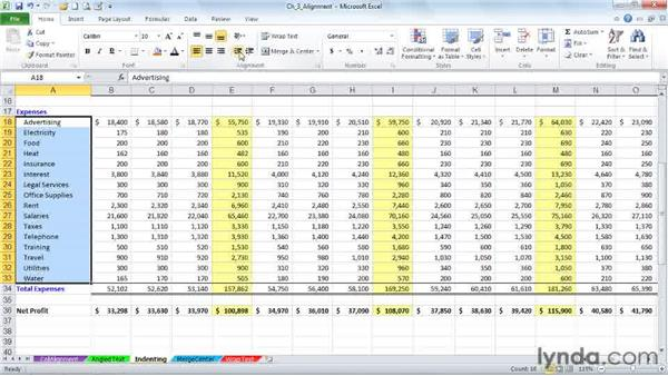 Indenting data and dollar signs: Excel 2010: Advanced Formatting Techniques