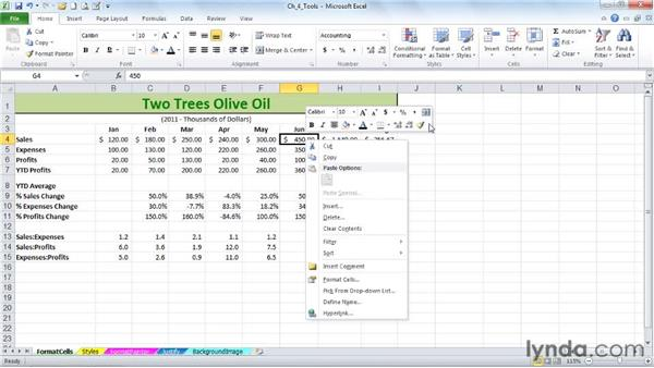 Using the multipurpose Format Cells dialog box and the pop-up mini-toolbar: Excel 2010: Advanced Formatting Techniques