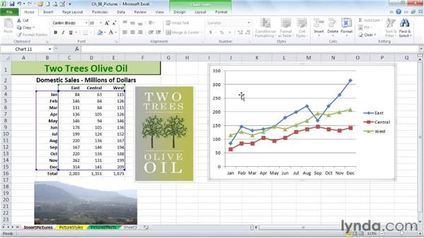 Converting a chart to a picture and adding new images: Excel 2010: Advanced Formatting Techniques