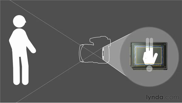Image sensors and field of view: Foundations of Photography: Lenses