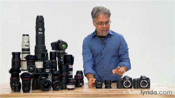 Lenses for crop sensor cameras: Foundations of Photography: Lenses