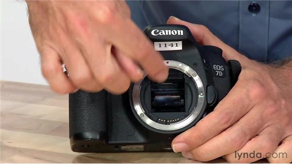 Maintenance: Foundations of Photography: Lenses