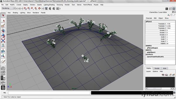 Choosing a model type: Creating Natural Environments in Maya