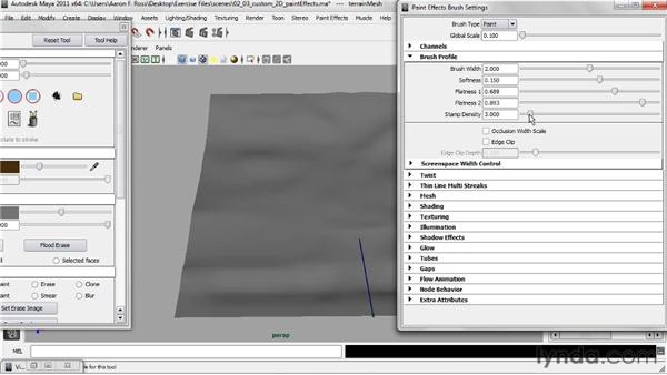 Customizing 2D Paint Effects brushes: Creating Natural Environments in Maya