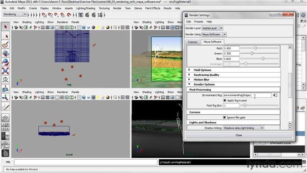 Rendering with Maya Software: Creating Natural Environments in Maya