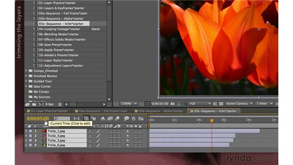 Example: Sequence layers and photographs: After Effects Apprentice 04: Layer Control