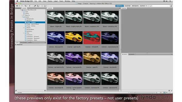 Applying presets: After Effects Apprentice 04: Layer Control