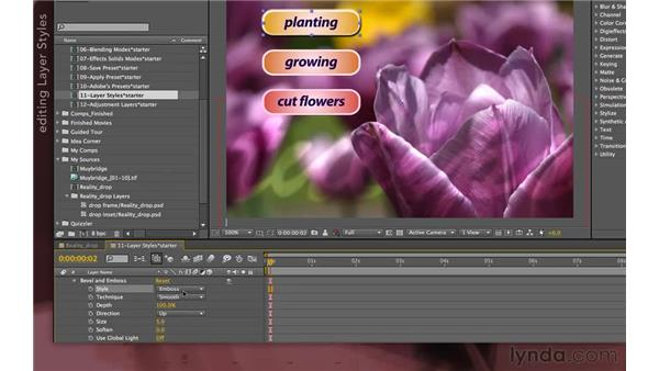 Applying layer styles inside After Effects: After Effects Apprentice 04: Layer Control