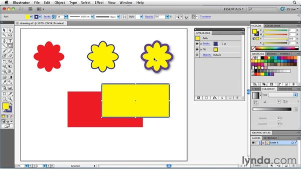 Controlling the appearance of newly drawn art: Illustrator Insider Training: Rethinking the Essentials
