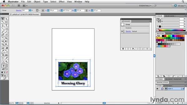 : Illustrator Insider Training: Rethinking the Essentials