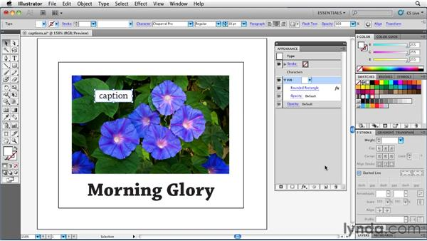 Adding captions with Convert to Shape and Transform: Illustrator Insider Training: Rethinking the Essentials