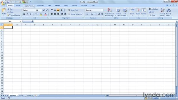 Using the exercise files: Excel 2007: Data Validation in Depth