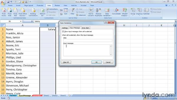 Using the Input message box: Excel 2007: Data Validation in Depth