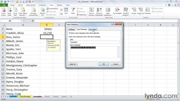 Using the Error Alert tab: Excel 2010: Data Validation in Depth