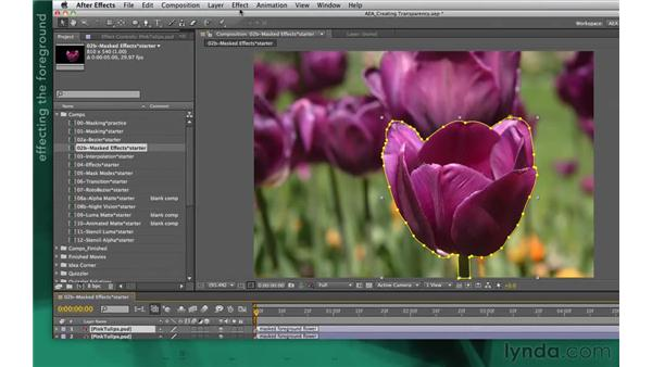 Using targeted treatments: After Effects Apprentice 05: Creating Transparency