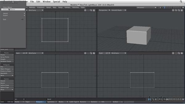 Working with Polygon Bevel: LightWave 10 Essential Training