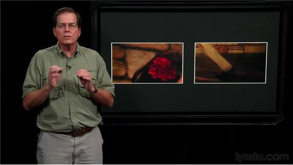Considering noise when comparing sensor sizes: Video for Photographers: Shooting with a DSLR