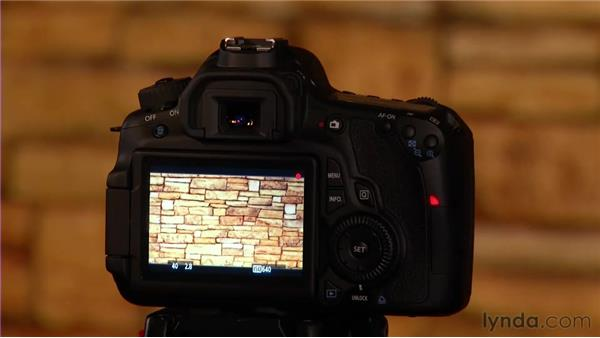 Shooting the moving subject: Video for Photographers: Shooting with a DSLR