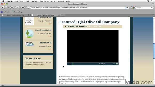 Cue point basics: Publishing Video with the Flash Platform