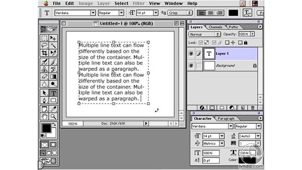 Text Overview: Learning Photoshop 6 and ImageReady 3 for the Web