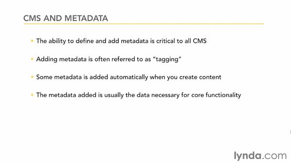 What is metadata?: CMS Fundamentals