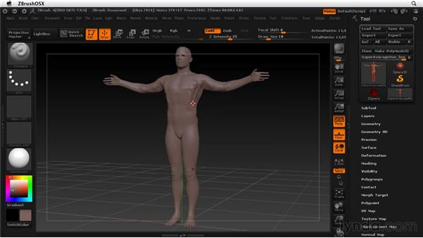 Activating symmetry: ZBrush 4 Essential Training