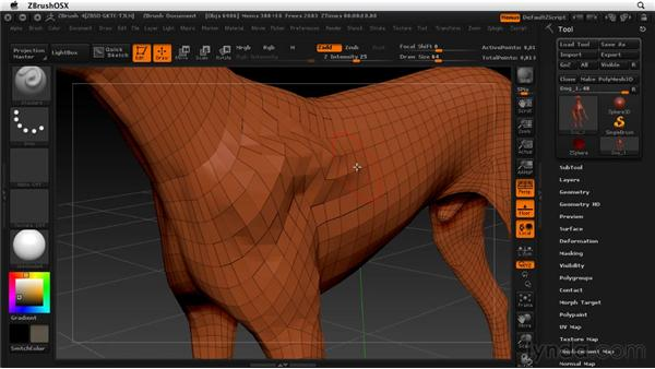 Understanding polygon-based models: ZBrush 4 Essential Training