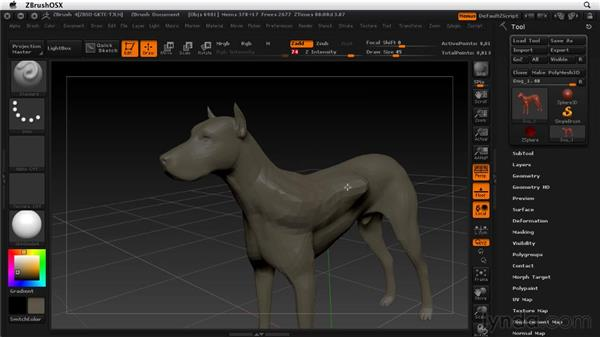 Understanding brush settings: ZBrush 4 Essential Training