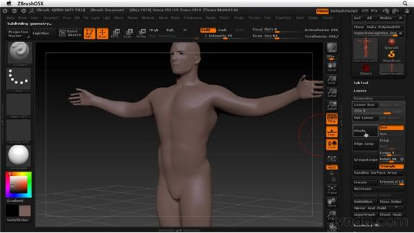 Working with subdivision levels: ZBrush 4 Essential Training