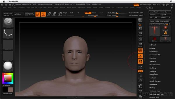 Selecting and hiding parts of a tool: ZBrush 4 Essential Training