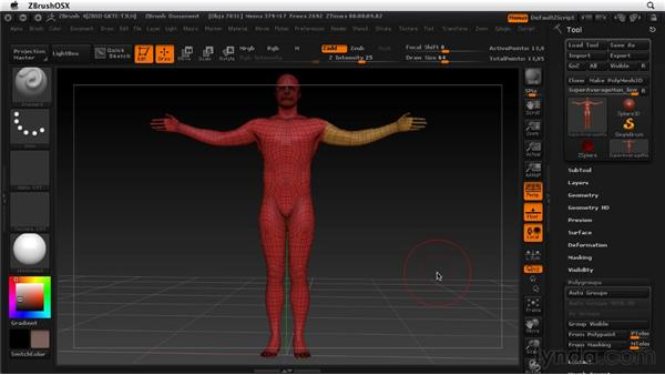 Working with polygroups: ZBrush 4 Essential Training