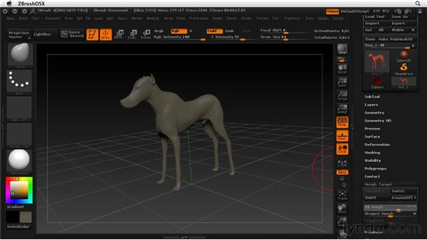 Creating morph targets: ZBrush 4 Essential Training