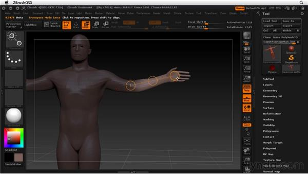 Adjusting the Transpose Manipulator: ZBrush 4 Essential Training