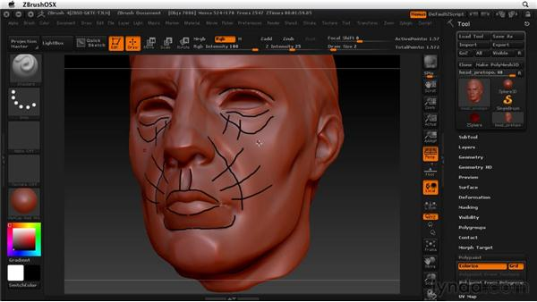 Drawing new edge flow for retopology: ZBrush 4 Essential Training