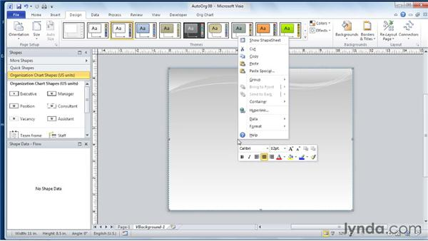 Creating background pages, title blocks, and borders: Visio 2010 Essential Training