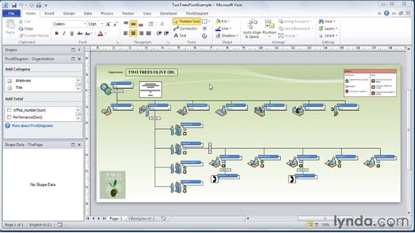 Understanding PivotDiagrams: Visio 2010 Essential Training