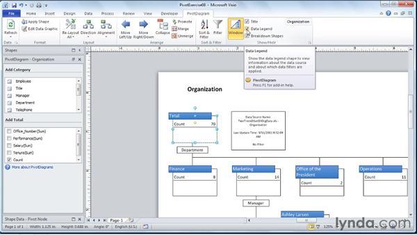 Setting display options: Visio 2010 Essential Training