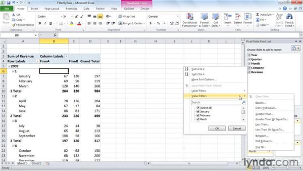 Filtering a PivotTable by rule: Excel 2010: Pivot Tables in Depth