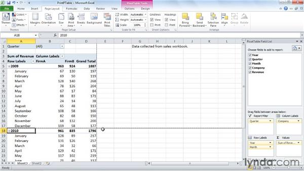 Printing a PivotTable: Excel 2010: Pivot Tables in Depth