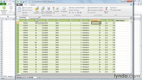 Introducing PowerPivot: Excel 2010: Pivot Tables in Depth
