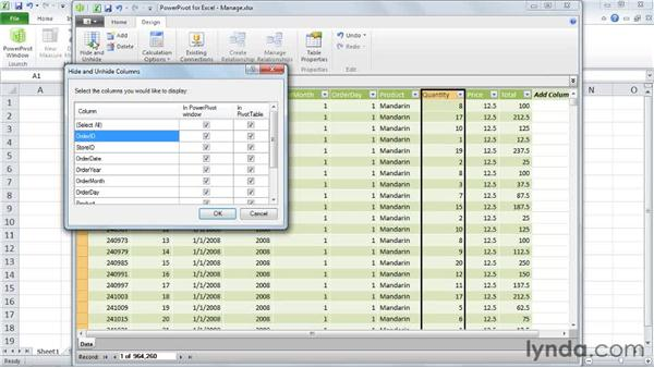 Managing table columns: Excel 2010: Pivot Tables in Depth