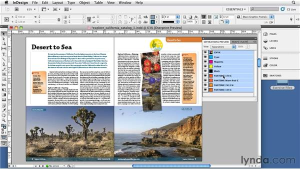 Understanding process colors, spot colors, and the Ink Manager: InDesign CS5: Print Production Guidelines
