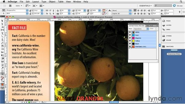 Using overprint vs. knockout: InDesign CS5: Print Production Guidelines